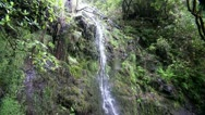Stock Video Footage of Rainforest waterfall 20110430 162333