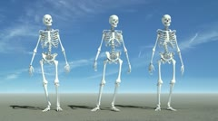 Three skeletons waiting for something. Stock Footage