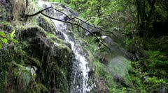 Rainforest waterfall scene with sound 20110430 162418 Stock Footage