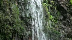 Rainforest waterfall close up with sound 20110430 162630 Stock Footage