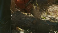 Man With Chainsaw Cuts Log Stock Footage