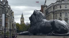 One of the lions at the base of Nelson's Column Stock Footage