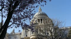 Part of Saint Paul's cathedral in London, England framed by cherry blossom. Stock Footage