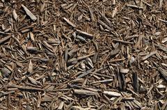 wood mulch background - stock photo