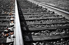 Railroad tracks in the fall Stock Photos