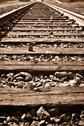 Vertical railroad track in fall Stock Photos