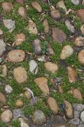 cobblestones with moss and grass - stock photo