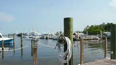 Coconut Grove Marina Stock Footage
