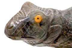 Yellow eye of stone lizard Stock Photos