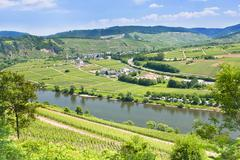Moselle valley and mosel river in summer day, germany Stock Photos