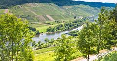 View on moselle valley and mosel river in summer day, germany Stock Photos