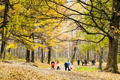 walking in oak park in autumn - stock photo