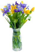 Bunch of flowers in glass vase Stock Photos