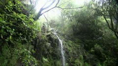 Rainforest waterfall with sound 20110430 162942 Stock Footage