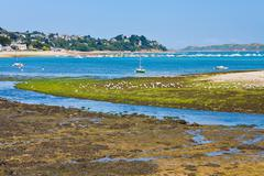 Ebb of tide water in brittany Stock Photos