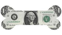 One Dollar Bone - stock photo