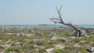 Rocky island and sea Stock Footage