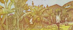 Harvesting Bananas on 100 Francs 1998 Banknote from Guinea Stock Photos