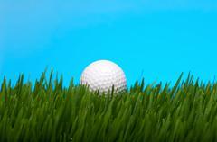 golf ball in tall grass - stock photo