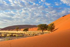 Sossusvlei landscape Stock Photos