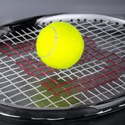 new tennis ball - stock photo