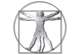 Leonardo Davinci - The Vitruvian Man Stock Illustration