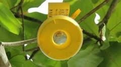 USDA FLY TRAP: nile virus-dengue-malaria-Chikungunya-mosquito-pandemic-Zika 1 - stock footage