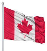 flag of canada - stock illustration