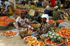 Mali tomatoes on sale at the market in segou Stock Photos