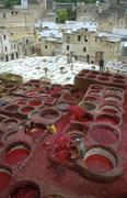 morocco leather dyeing vats fes people person - stock photo