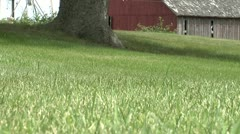 Lawnmowing Horiz Pass Low Angle Stock Footage