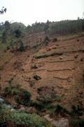 Burundi severe erosion o0n steep fields near Stock Photos