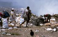 Stock Photo of brazil scavengers at work on the garbage dump