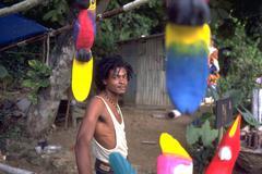 Man male jamaican rastafari jamaica gaze parrots Stock Photos