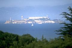 Stock Photo of sailboat sailing front alcatraz island birds by