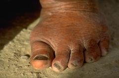 women females ifugao shows leathred foot banaue - stock photo