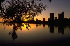 Puu järven Merritt auringonlasku Oaklandissa Kaliforniassa Kuvituskuvat