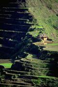 house nature rice terraces strata land unusual - stock photo