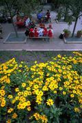flowers school children kids picnicing park - stock photo