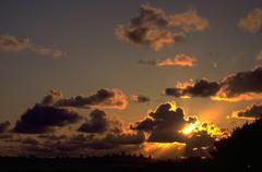 Siluetti aurinko san francisco siluetti auringonlaskun ca Kuvituskuvat