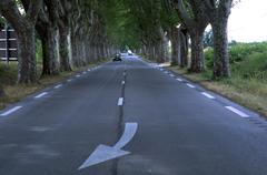 Canapy simetrical trees road provence france Stock Photos