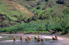 Beach horse men males back riding shore island Stock Photos