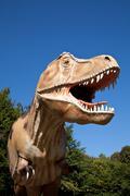 Aggressive t-rex Stock Photos