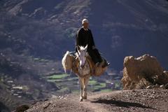 Marokko matkustaa muuli high atlas liikenteen - stock photo