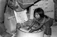 Stock Photo of child kid labor girl milling corn for tortillas