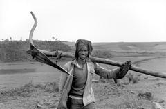 Farming farmer with his plough eritrea people f Stock Photos