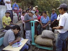 guatemala growers having their organic coffee at - stock photo