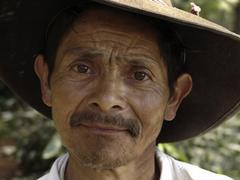Stock Photo of honduras farmer of marcala latin america central
