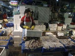 korea fish squid on sale at karakan wholesale - stock photo