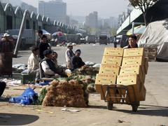 Korea karakan wholesale food market seoul photo Stock Photos